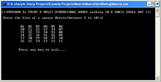 SNAIL MATRIX Output